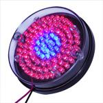 Light Tile 90-LED Red/Blue 24V Round