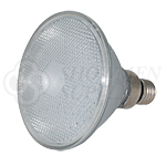 LED Flood Bulbs